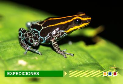 Colombia Bio expediciones