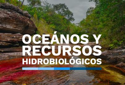 Oceanos y recursos hidrobiológicos